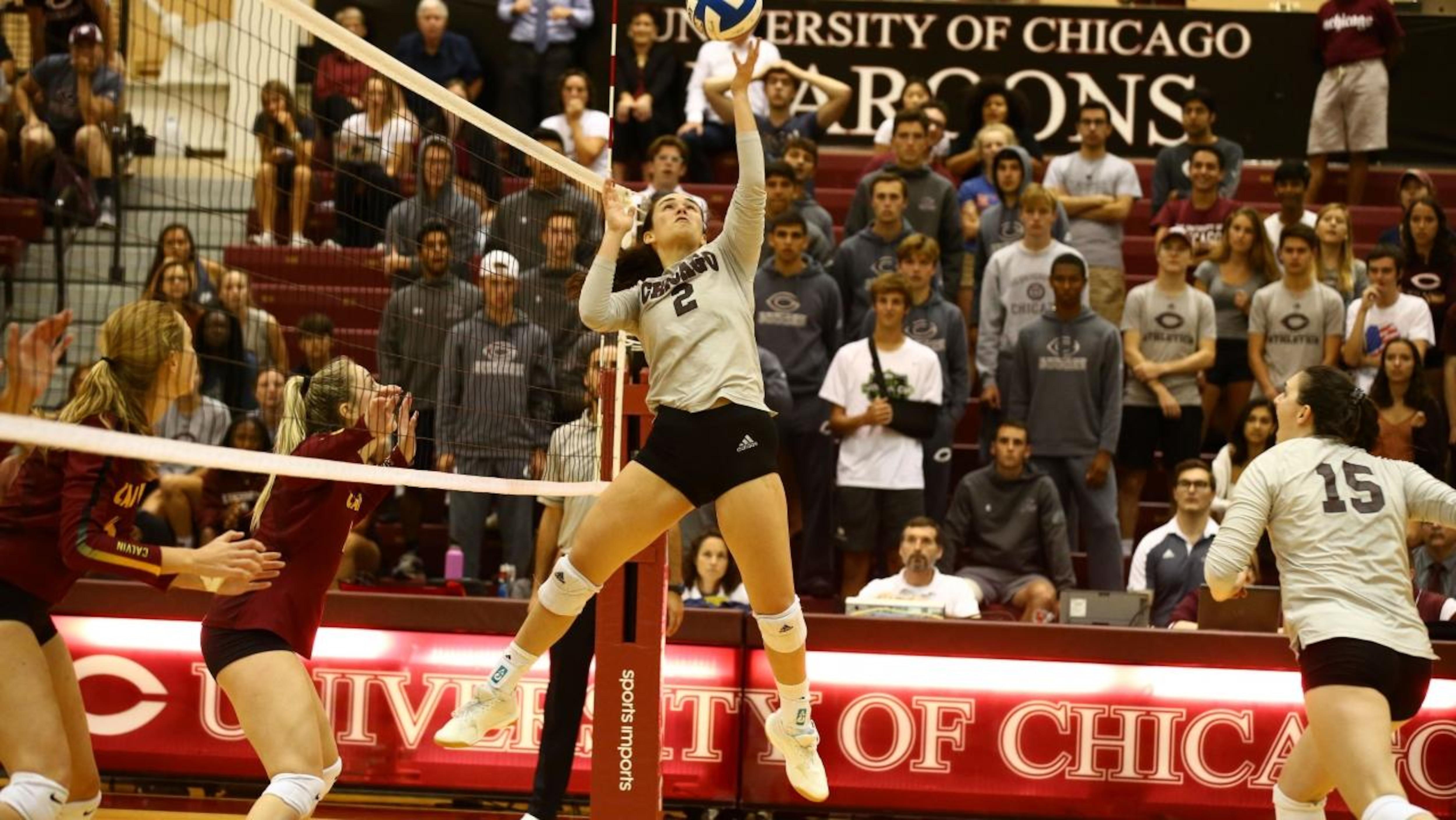 Diii Women S Volleyball Chicago Beats Top Ranked Calvin 3 1 Ncaa Com