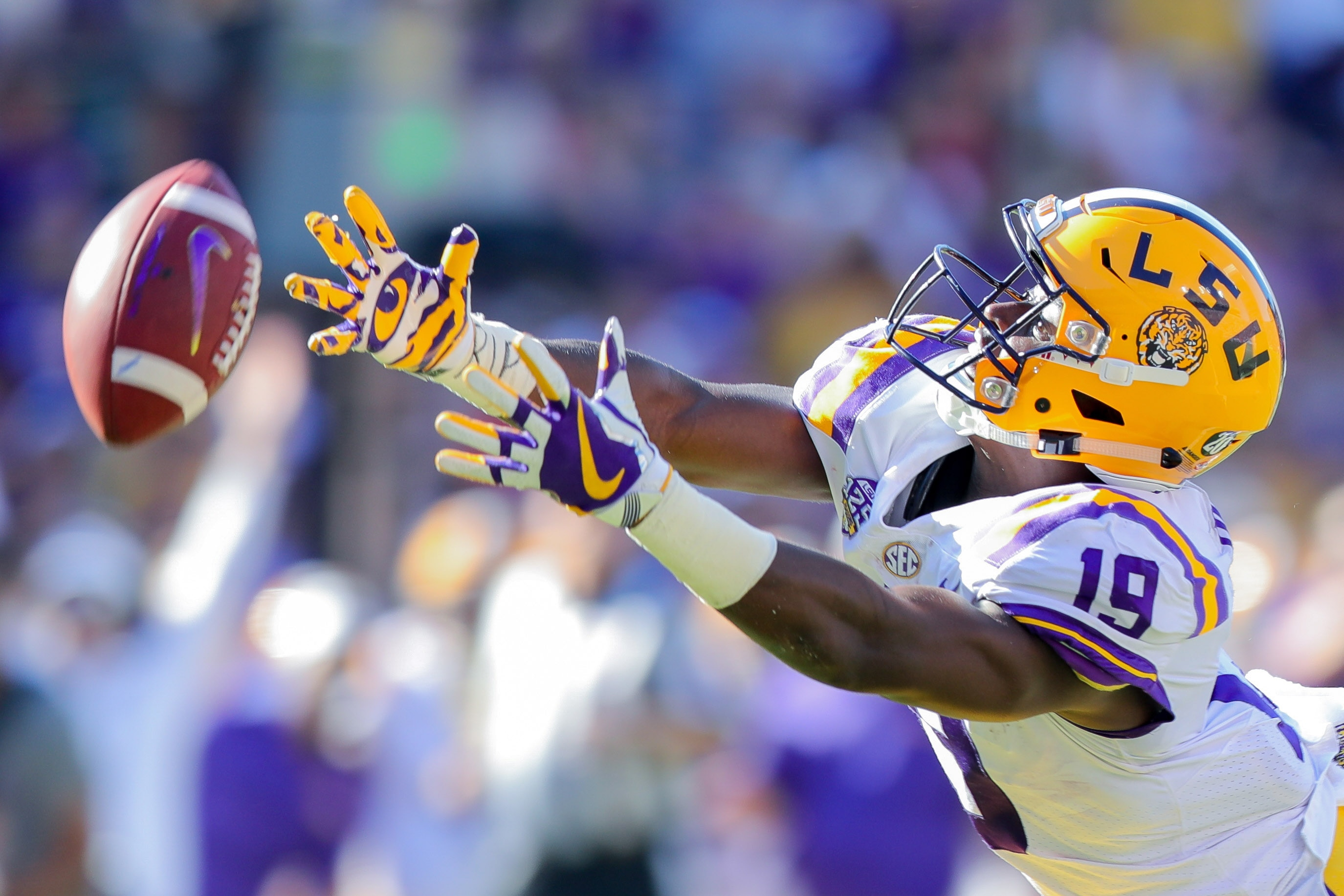 What do you think about these LSU footballs ...