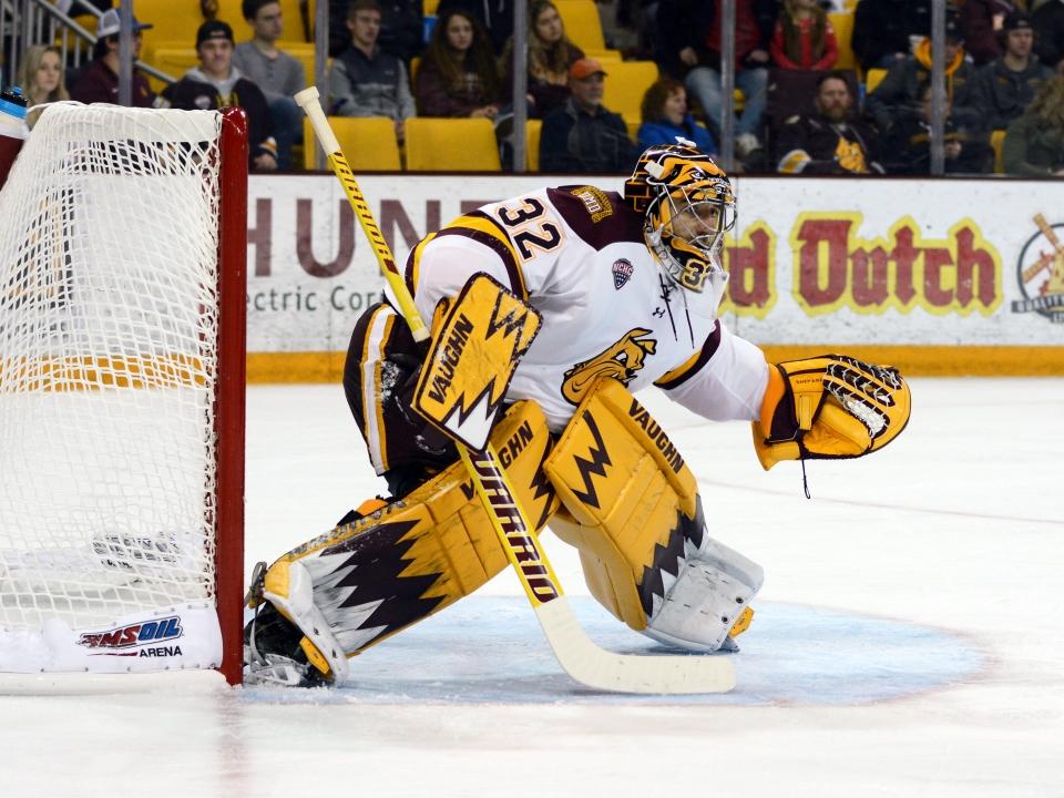 Minnesota Duluth hockey