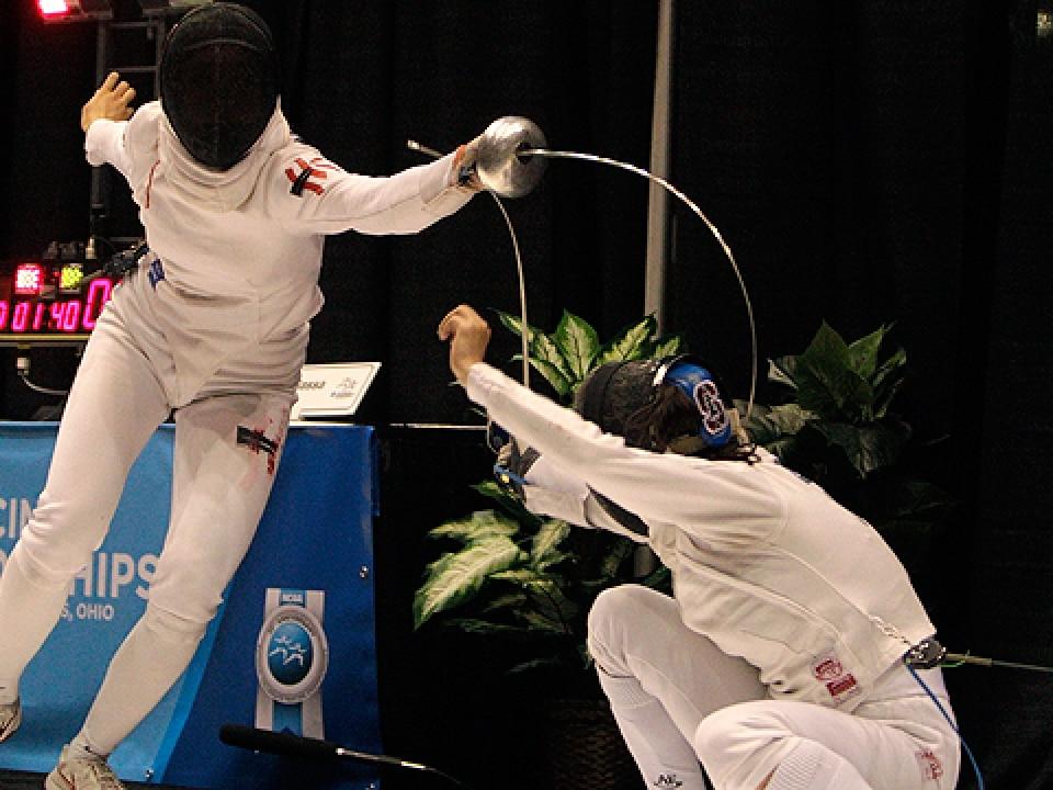 fencing-lede-321.jpg
