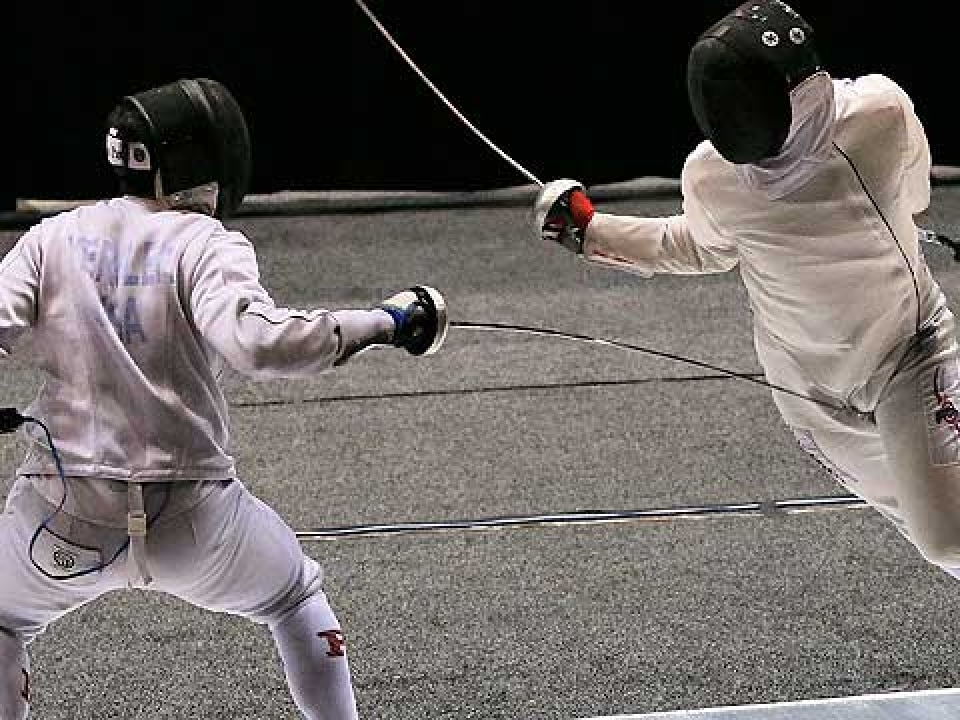 fencing-preview-3192014.jpg