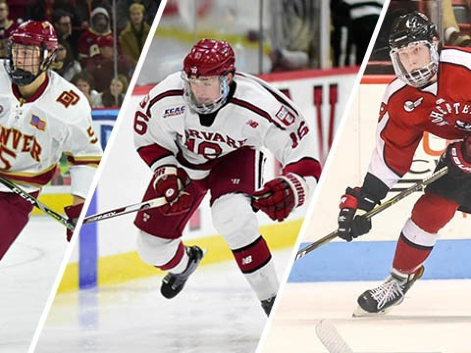 Image result for ncaa hockey