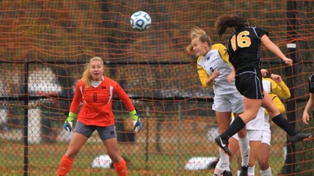 Women's Soccer, Michigan, Division I