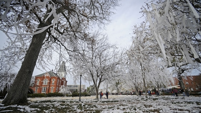traditions rolling toomers corner ncaacom